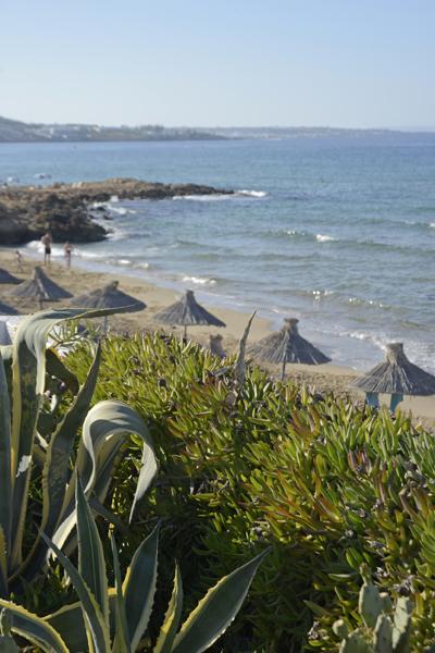 ekati apts the view to the beach
